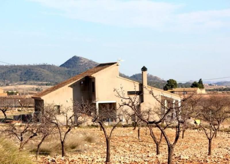 For sale: 5 bedroom house / villa in Pinoso / El Pinós, Costa Blanca