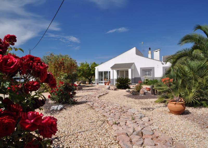 For sale: 3 bedroom house / villa in Aspe, Costa Blanca