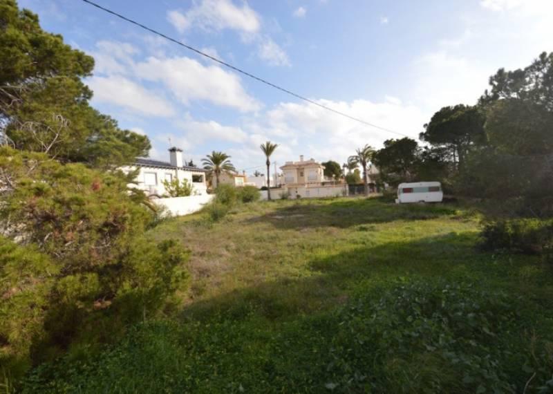 For sale: Land in Alicante City