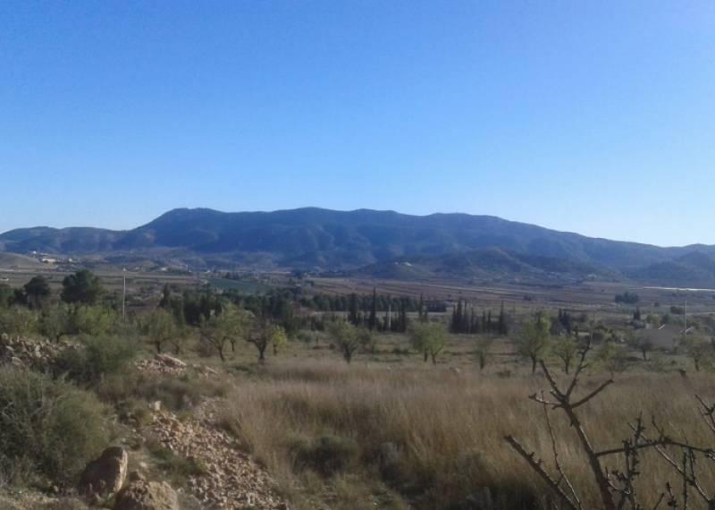 For sale: Land in Hondón de las Nieves, Costa Blanca