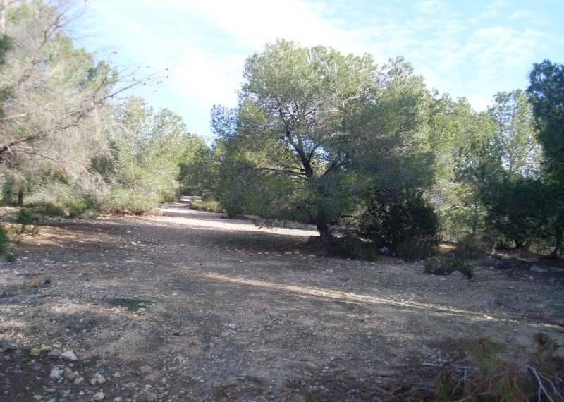For sale: Land in San Miguel de Salinas, Costa Blanca